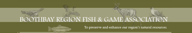 BRFGA Boothbay Region Fish and Game Association